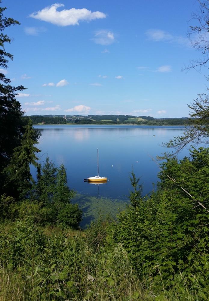 Simssee Umrunden - Blick vom Radweg auf den See