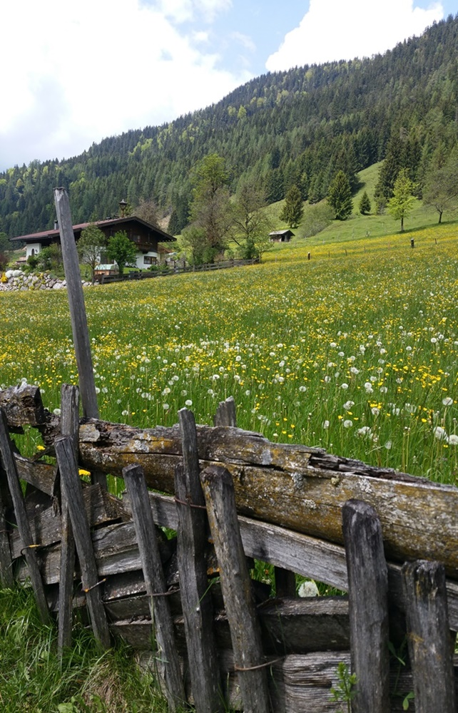 Im Land der Steinberge in Salzburg und Tirol