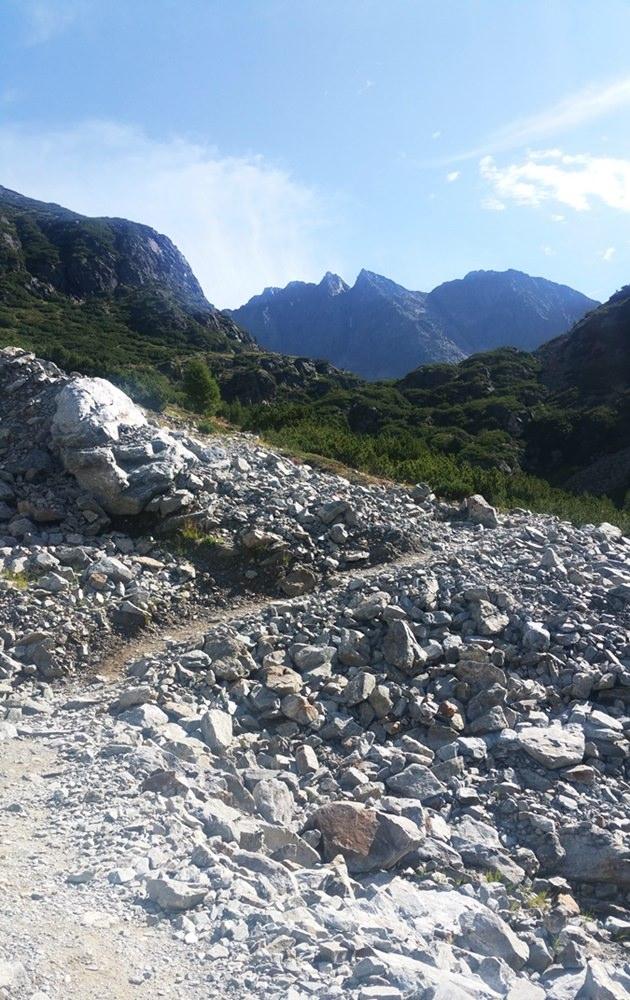 Gerölliger Weg im Winnebachtal, einem Seitental des Ötztals
