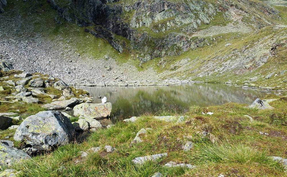 1. See beim 4-Seen-Marsch: der Plettachsee/ Ötztal/ Tirol