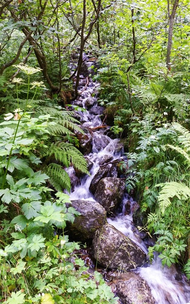 Mehr als nur Seen - auch an Bächen und kleinen Wasserfällen geht der 4-Seen-Weg vorbei.