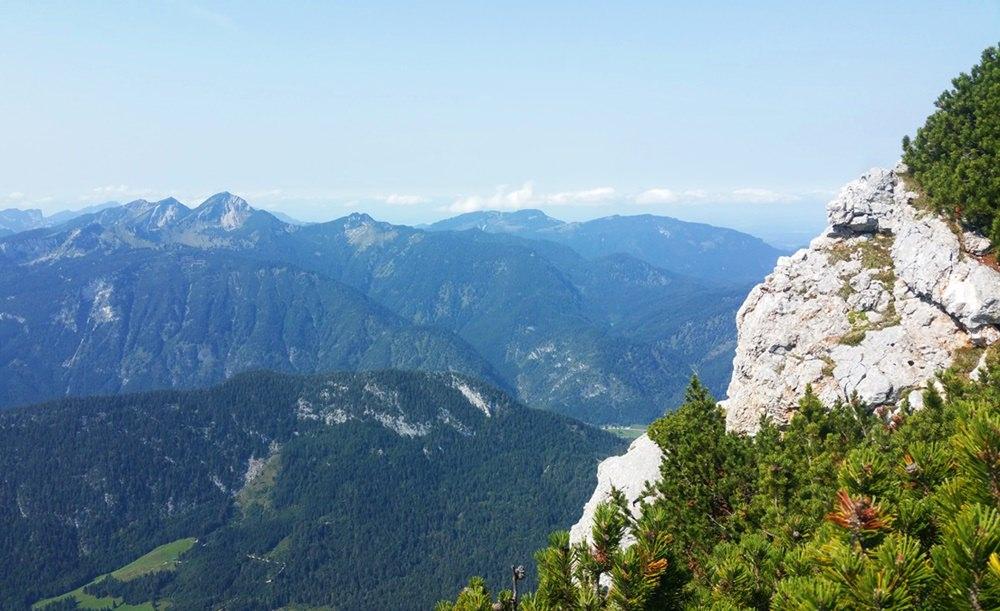 Blick von der Reiteralm zu den Chiemgauer Alpen