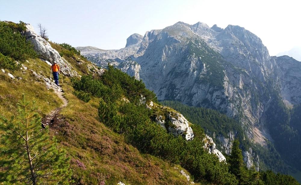 Felsen und Latschen und Gipfelglück auf der Reiteralm