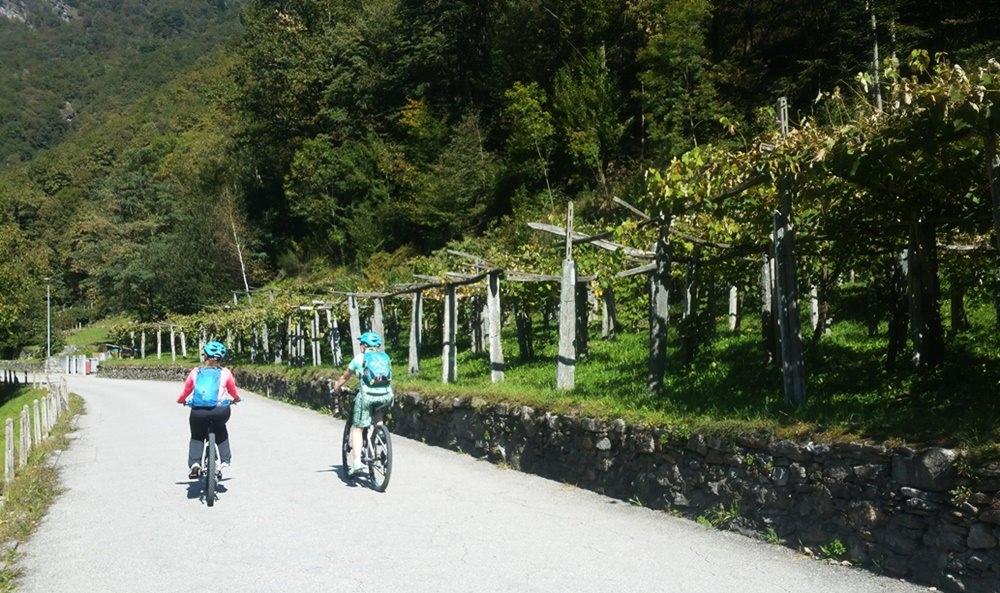 Vorbei an Weinbergen: Radtour im Maggiatal | Tessin, Schweiz