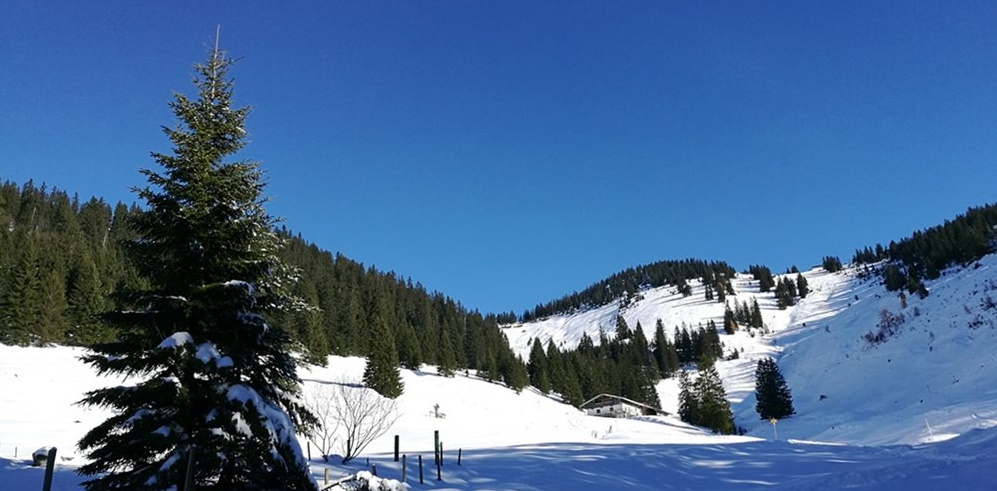 Gipfelbuch Chiemgauer Alpen: Dürrnbachhorn mit Schneeschuhen