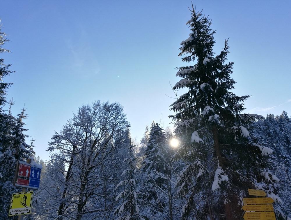 Endlich Sonne, raus aus dem engen Tal am Dürrnbach