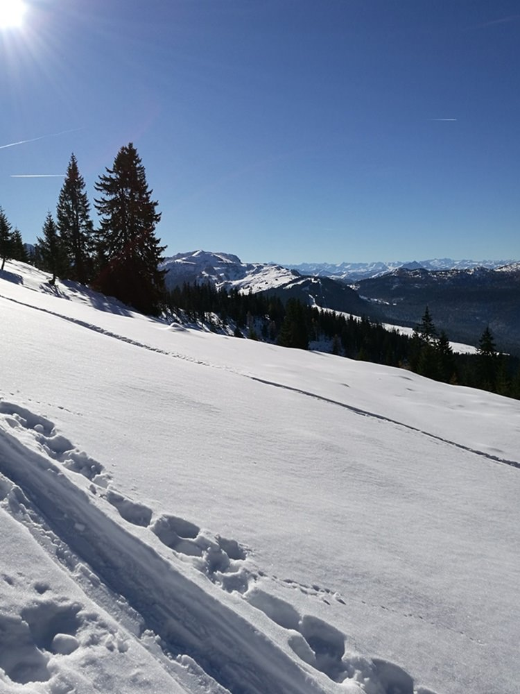 Steiler Hand mit Aufstiegsspur - mit Schneeschuhen zum Dürrnbachhorn