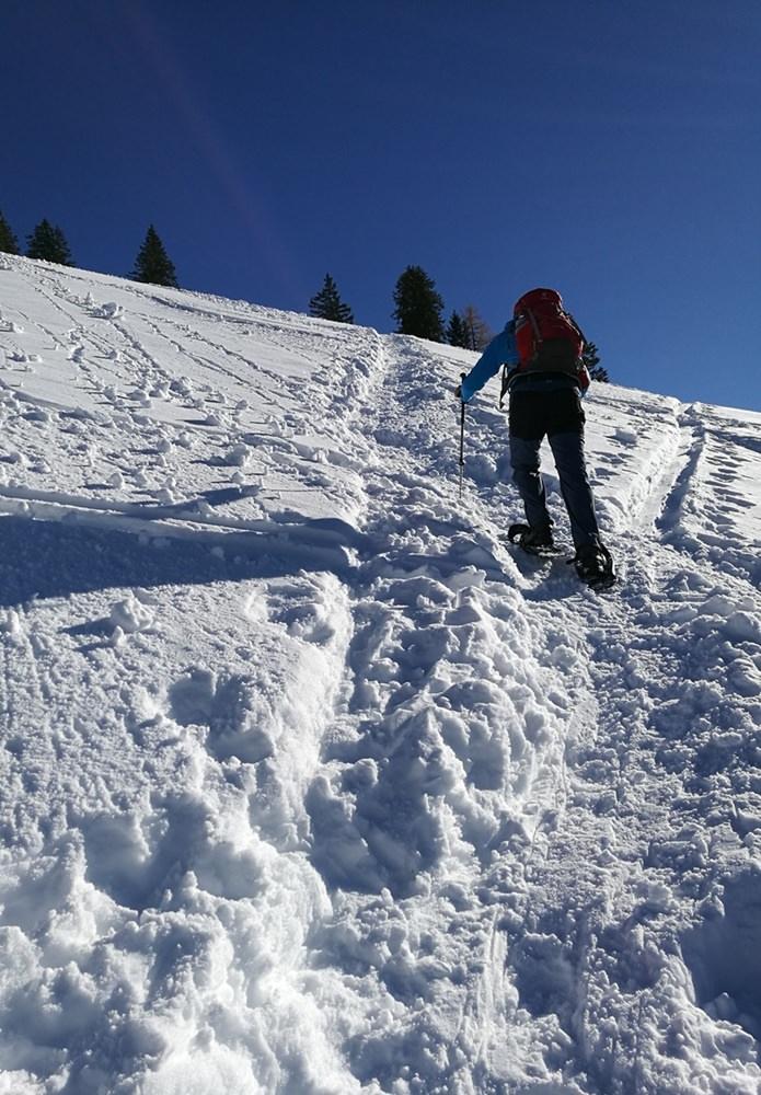 Steiler Hand zwischen Dürrnbachalmen und Bergstation des Sommer-Sessellifts auf dem Weg zum Dürrnbachhorn