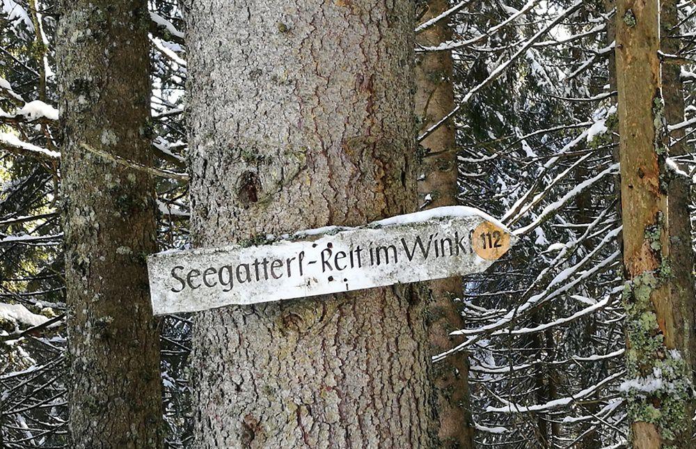 Rückweg zum Parkplatz in Seegatterl/ Reit im Winkl
