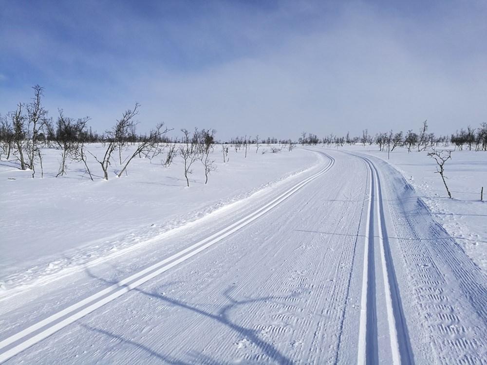 Mit den Langlaufski durch sonnige Fjell-Einsamkeit in Hovden, Norwegen