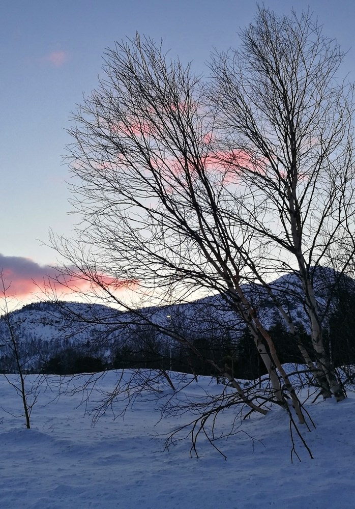 Winterlicher Sonnenuntergang in Hovden, Norwegen
