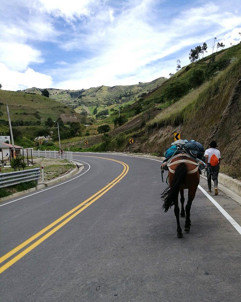 Zurück in der Zivilisation, kurz vor dem Erreichen von Chugchilan/ Ecuador