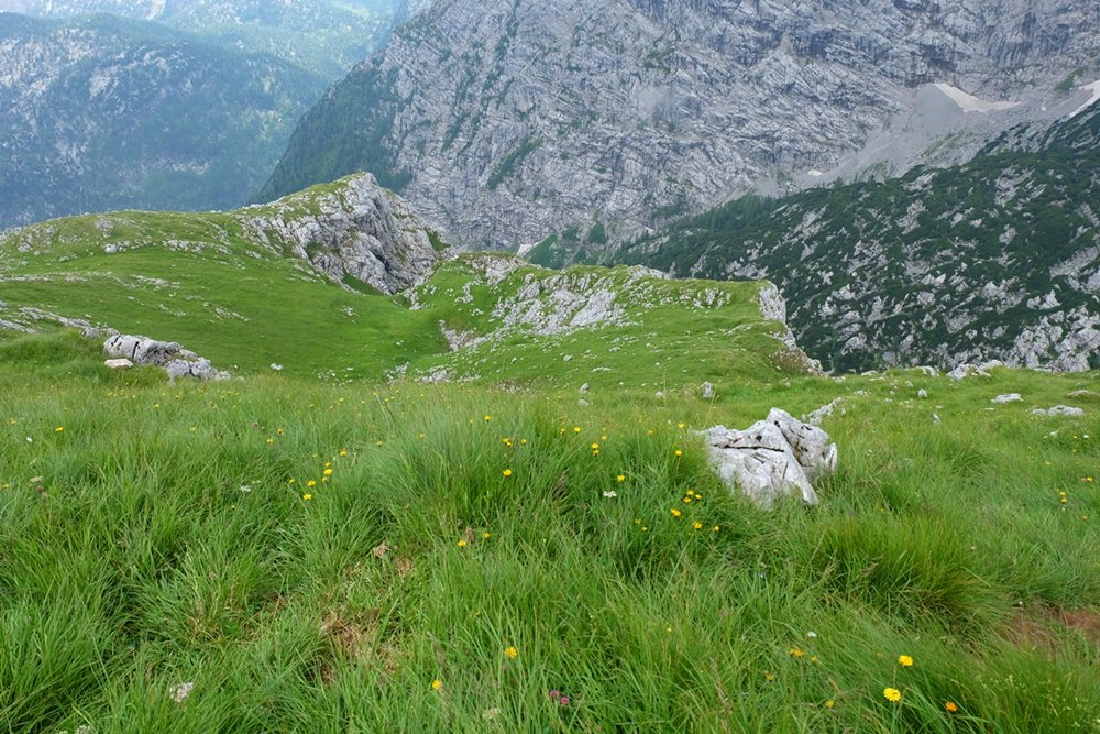 Unwegsam und einsam, aber nicht schwer: zwischen Trischübel und Hirschwieskopf