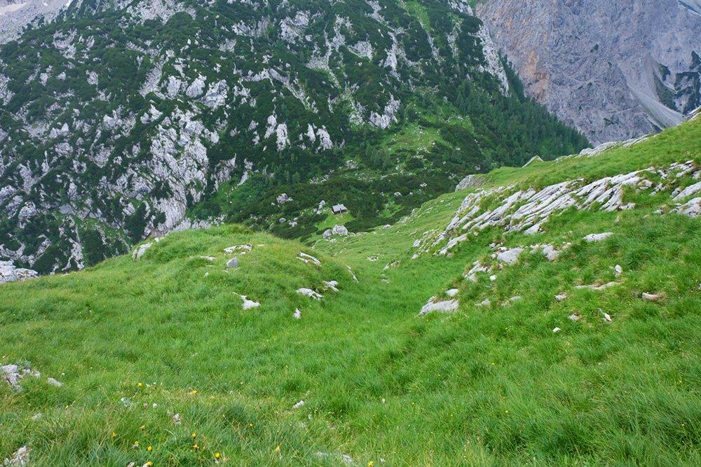 Steil ist der Abstieg vom Hirschwieskopf, mit dem Zwischenziel Jagdhütte.
