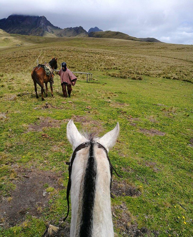 """Wie die """"chagras"""", die ecuadorianischen Cowboys: mit dem Pferd über die Paramo Hochebene in Ecudaor"""