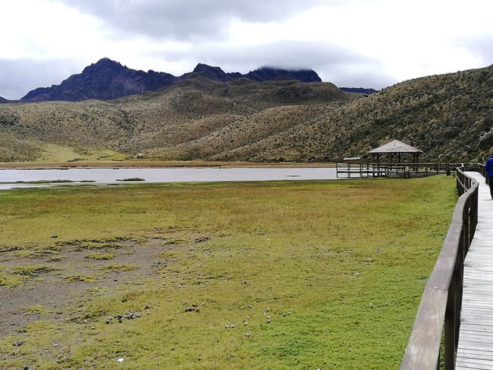 Laguna Limpiopungo und Vulkan Ruminahui im Cotopaxi Nationalpark, Ecuador