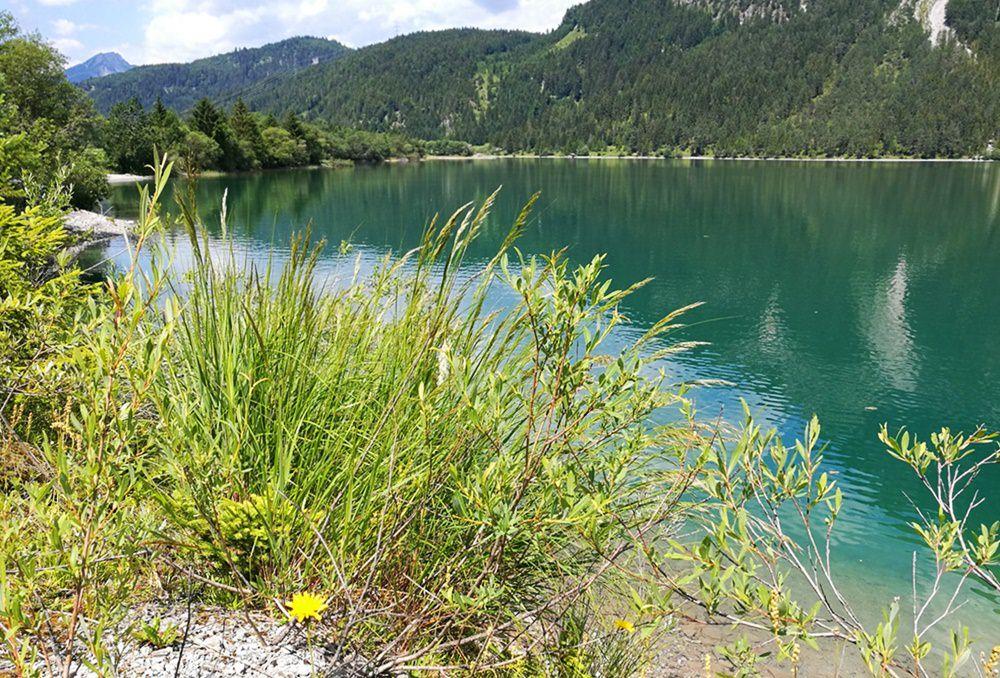 Ehrwald/ Tirol: Rund um den Daniel mit dem Mountainbike