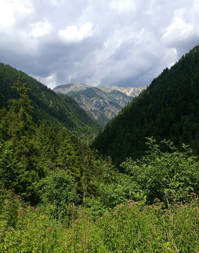 Wild und verwunschen: das Naidernach-Tal | Rund um den Daniel
