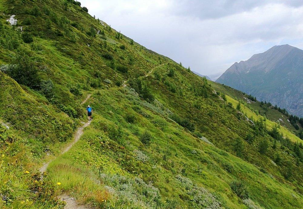 Muhs Panoramaweg - im stetigen Auf und Ab durch Blumenwiesen | Virgental, Österreich