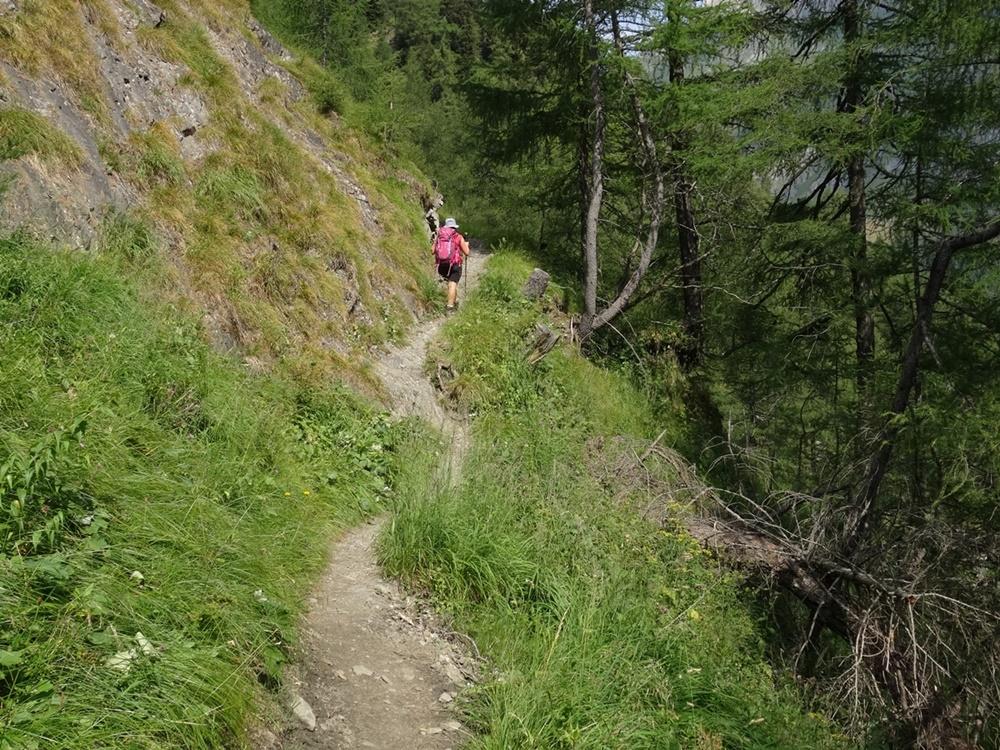 Abstieg von der Bergerseehütte ins Virgental | Osttirol, Österreich