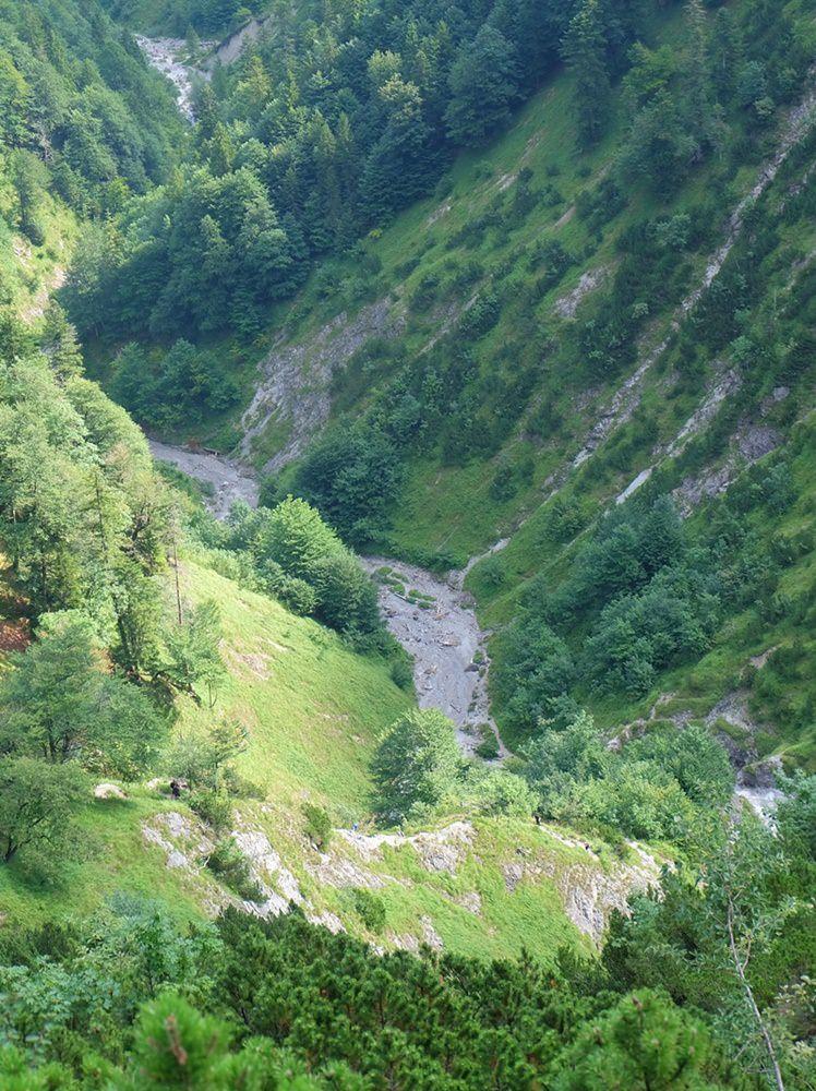 Blick zurück hinunter in die Wolfsschlucht auf dem Weg zum Schildenstein | Bergsteigerdorf Kreuth, Bayern