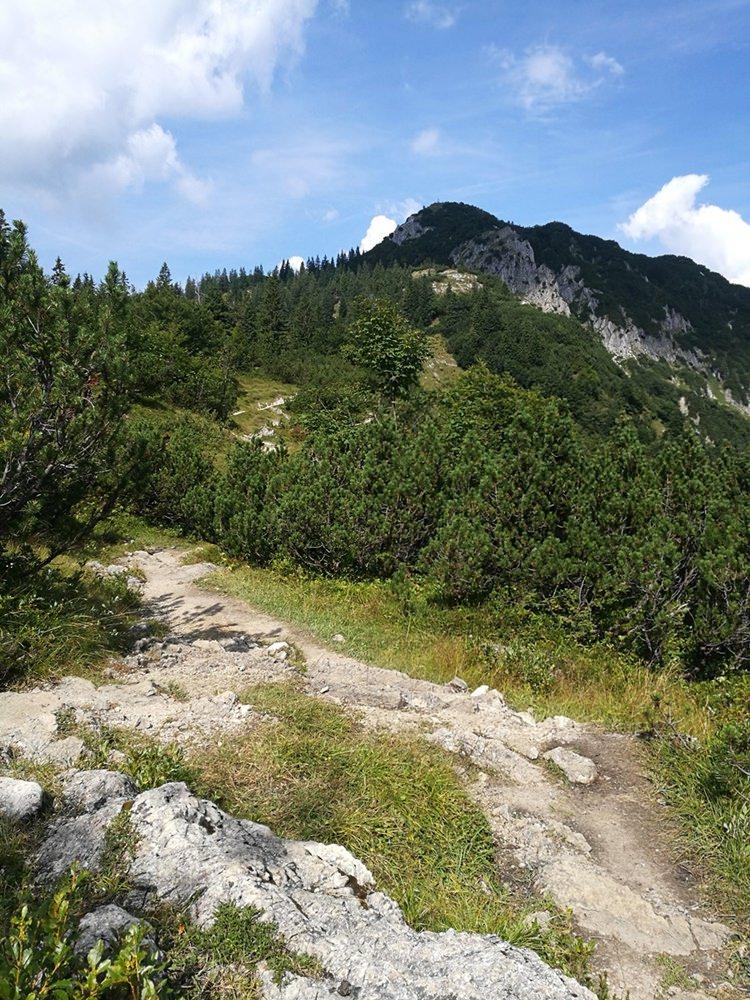 Blick vom Blauberg-Sattel zum Gipfel des Schildenstein oberhalb des Bergsteigerdorf Kreuth | Tegernseer Tal, Bayern