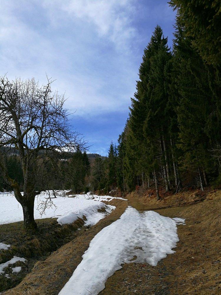 Frühling im Tal - Start der Dobratsch Tour in Heiligengeist | Kärnten, Österreich