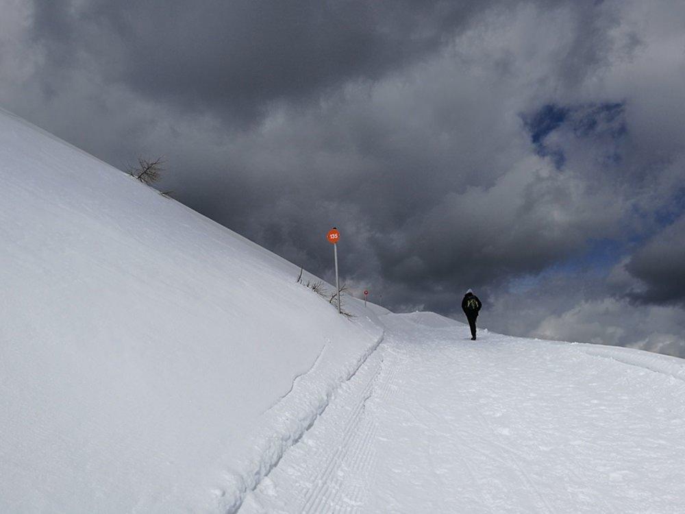 Dunklen Wolken entgegen, dem nächsten Nummern-Schild entgegen, am Weg zum Dobratsch.