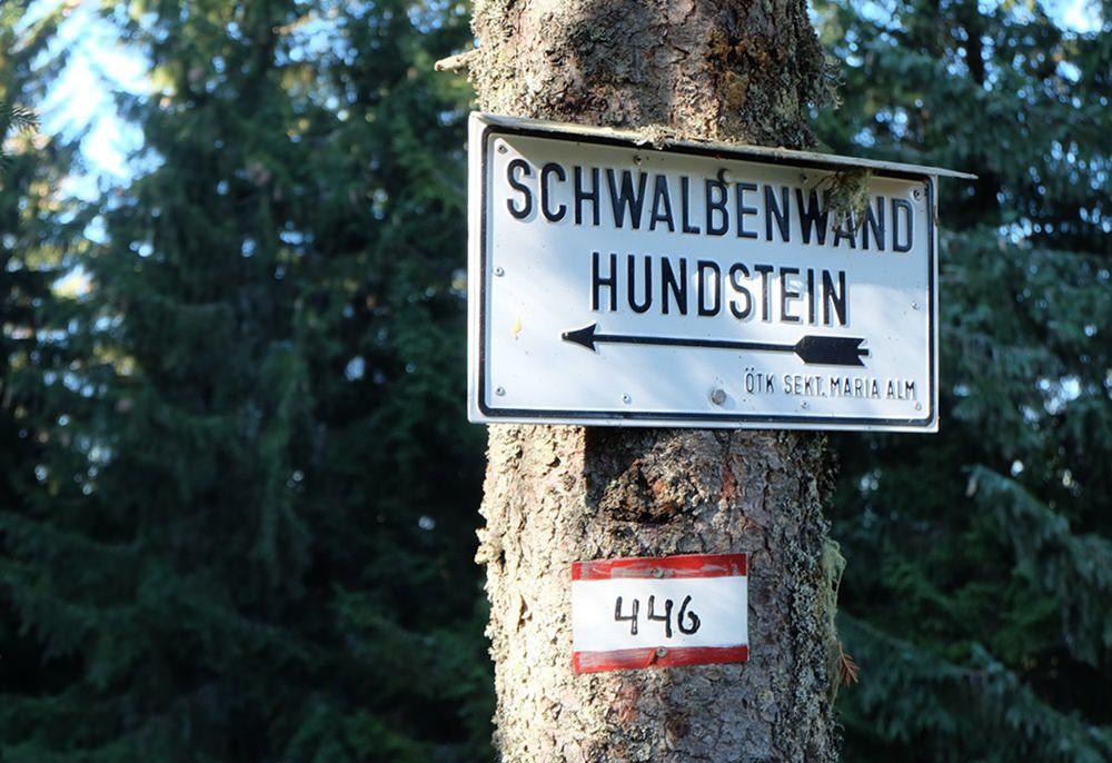 Über die Schalbenwand zum Hundstein - Herbst im Pinzgau | Österreich