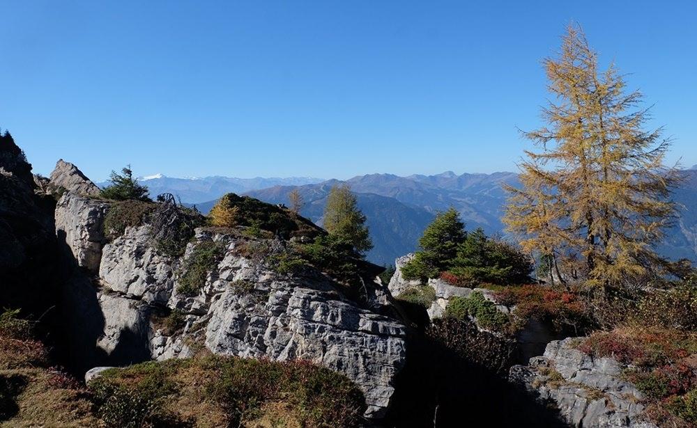 Kurz vor dem Gipfel der Schwalbenwand im Pinzgau | Österreich