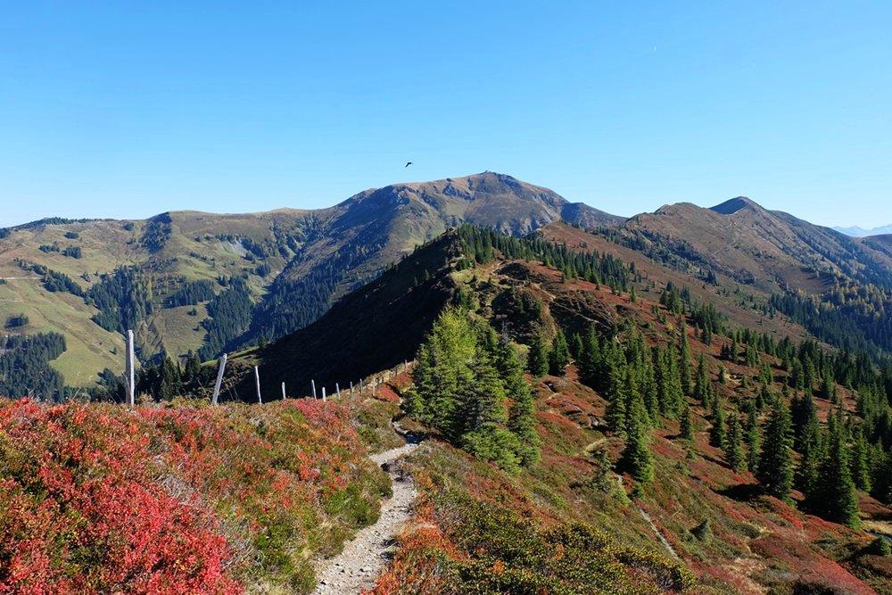 Herbstfarben auf dem Weg zum Hundstein in den Pinzgauer Bergen | Österreich
