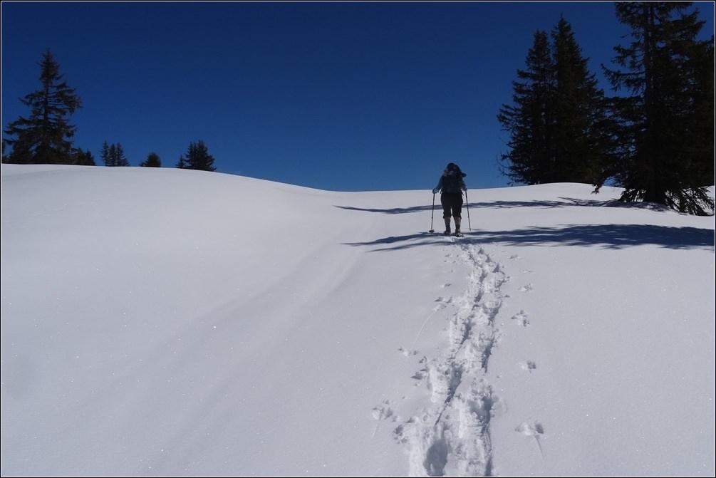 Im Schneeschuh-Paradies: Endspurt durch unberührten Pulverschnee hinauf zum Rossbrand-Gipfel | Österreich