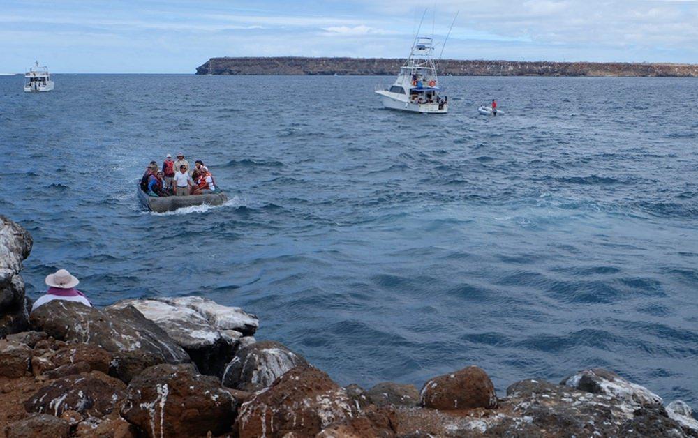 Mit Yacht und Dinghi zum Tiere beobachten nach Seymour Norte | Galapagos