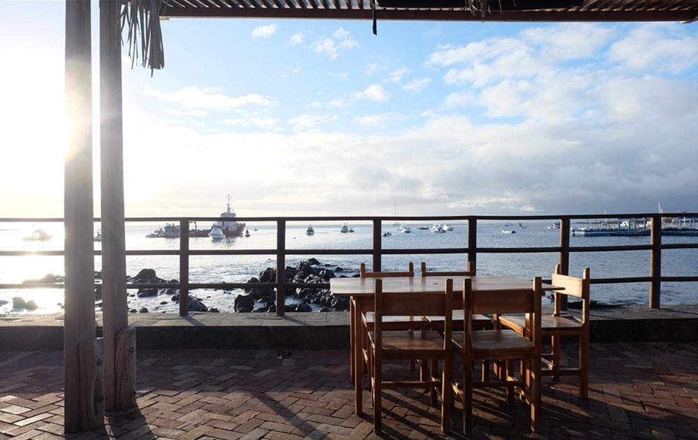 Ein Snack am Nachmittag mit Seelöwen-Blick. Auf der Insel San Cristobal, Galapagos.