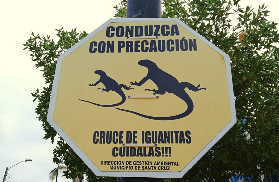 Straßenschild Santa Cruz, Galapagos