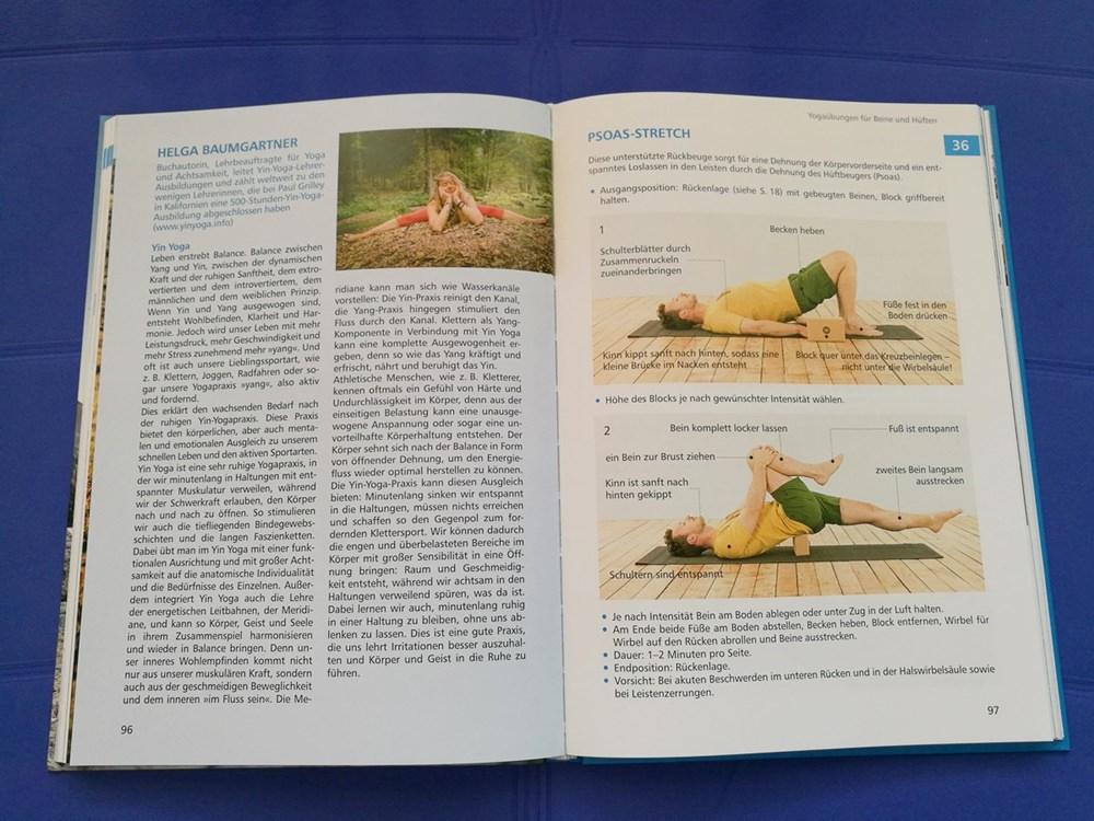 Warum ist Yoga so toll, und so wichtig? Viele Erklärungsversuche von Yogis.