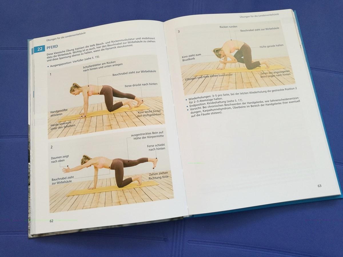 Die Asana Pferd - im Kapitel Übungen für die Lendenwirbelsäule, teil der Sequenz Skibergsteigen.