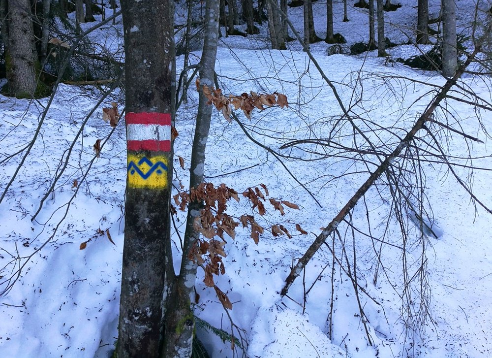 Am schattigen Start der Schneeschuhtour, zwischen Hammerstiel und Stubenalm | Nationalpark Berchtesgaden