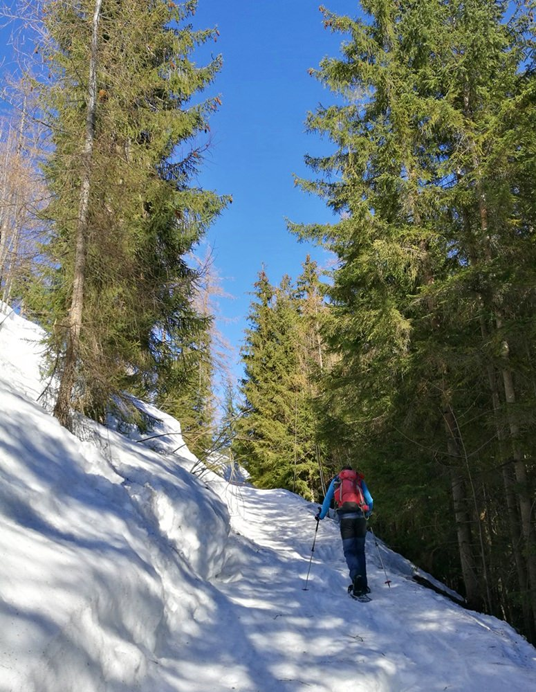 Flacher Aufstieg zur Stubenalm, steil wird es erst später. | Schneeschuh Tour Watzmann Gugl