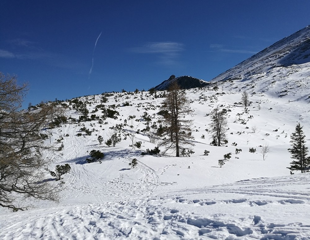 Blick zum Watzmannhaus vom Plateau der Watzmann Gugl aus | Schneeschuhtour Berchtesgaden