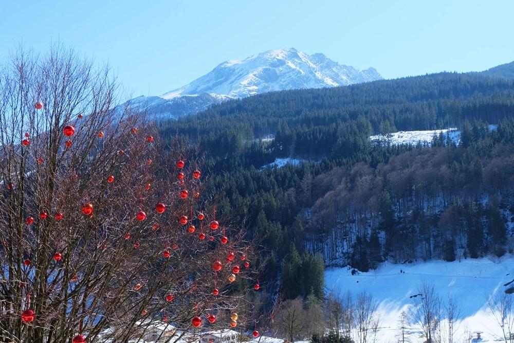 Die Buche mit den roten Kugeln am Berghotel Rehlegg | Bergsteigerdorf Ramsau