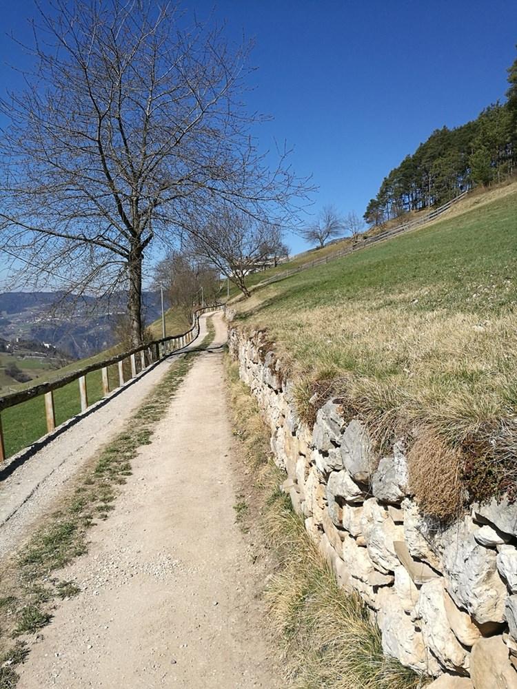 Endlich ohne Schnee - Wanderweg in Südtirol im Frühling