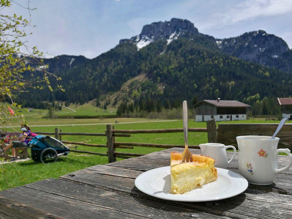 Kuchen auf der Langerbaueralm/ Röthelmoos, Chiemgau