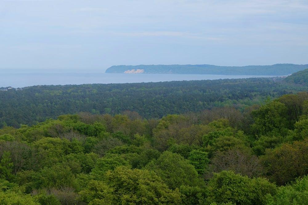 Blick vom Aussichtsturm des Baumwipfelpfads auf die Ostsee und die Buchenwälder Rügens