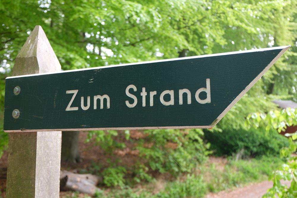 Da lang zum Strand - im frühlingsgrünen Wald auf Rügen