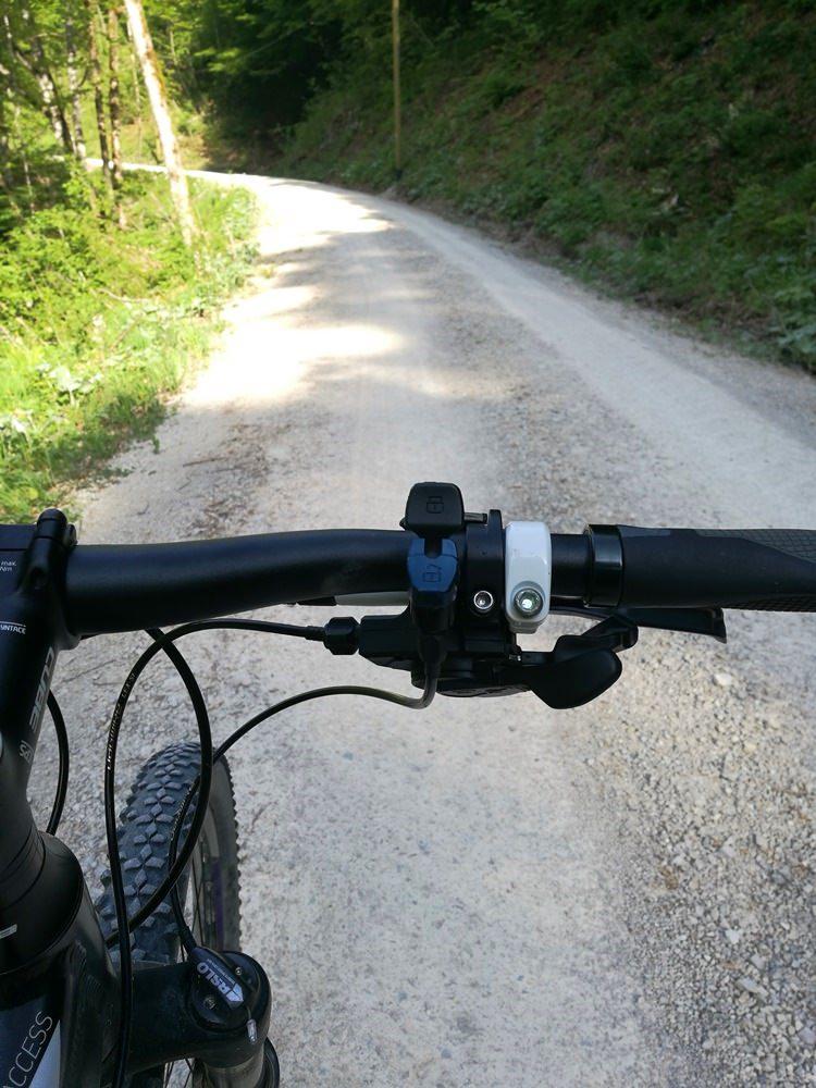 Halb-steile Forstwege - langweilig zu Fuß, Training mit dem Mountainbike, ein Versprechen für den Rückweg | Bike & Hike Hochgern von Ruhpolding
