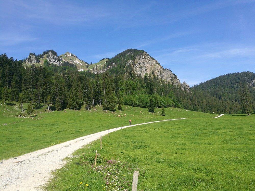 Grün-blaue Ruhe: mit dem Mountainbike ins Eschelmoos | Hochgern, Chiemgau
