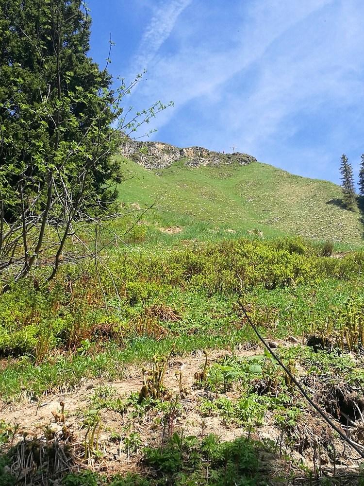 Gipfelkreuz in Sicht - die letzten steilen Meter zum Hochgern