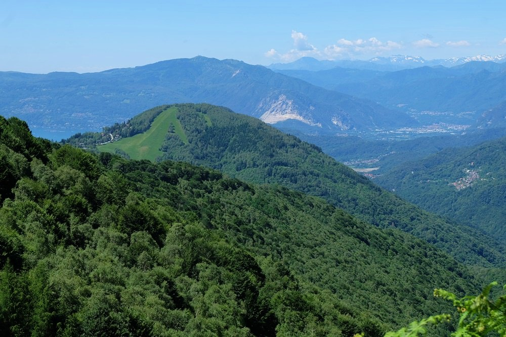 Grüne Wälder wohin man auch schaut, rund um den Lago.   Piemonte, Italien