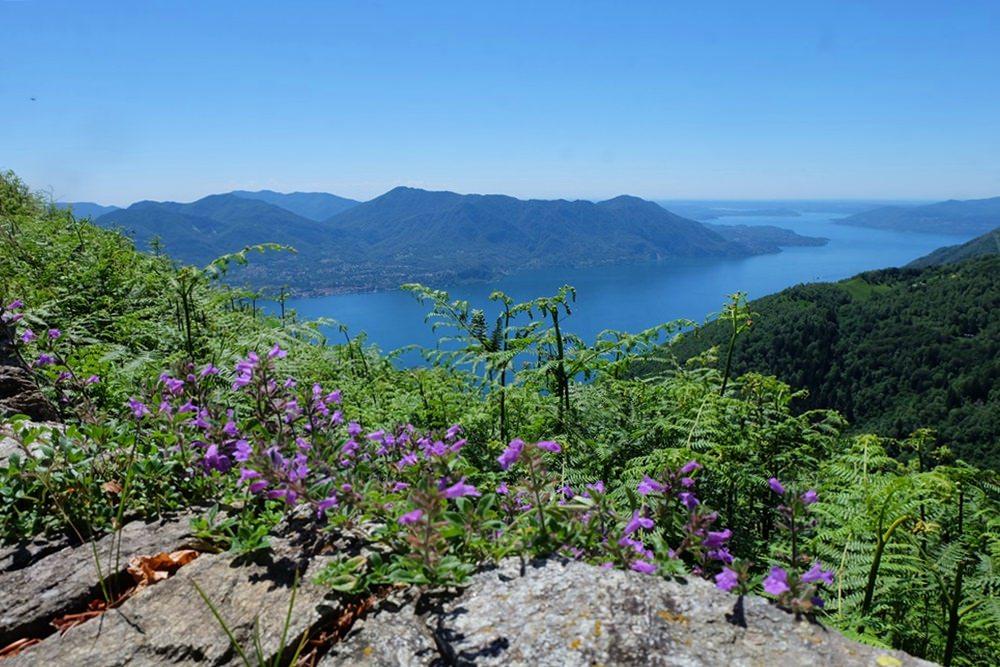 Ein perfekter Tag zum Mountainbiken - auf der Linea Cadorna 1000m über dem Lago Maggiore   Italien